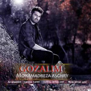 دانلود آهنگ محمدرضا اصغری با نام گوزلیم