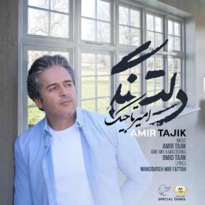 دانلود آهنگ امیر تاجیک با نام دلتنگی