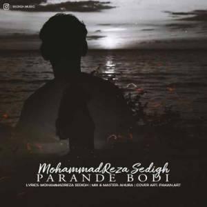 دانلود آهنگ محمدرضا صدیق با نام پرنده بودی