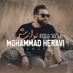 دانلود آهنگ محمد هروی با نام نوازش