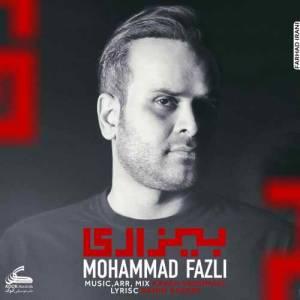 دانلود آهنگ محمد فضلی با نام بیزاری