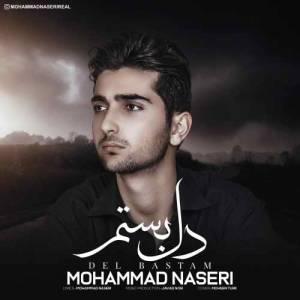 دانلود آهنگ محمد ناصری با نام دل بستم