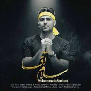 دانلود آهنگ محمد شیبانی با نام سلام آقا