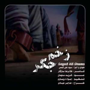 دانلود آهنگ سید علی شمس با نام زخم جگر